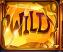 Wild features