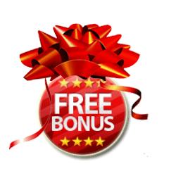 Hoe hoog is de bonus?